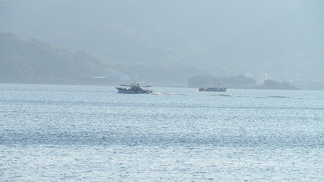 太刀魚がそろそろ釣れよる と おっさんが言っていた 小豆島 内海湾