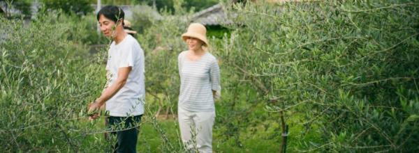 food letters|夏・小豆島編 暑くて熱い旅の始まりは、有機栽培のオリーブ畑へ