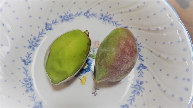アーモンドの果実を食べてみる