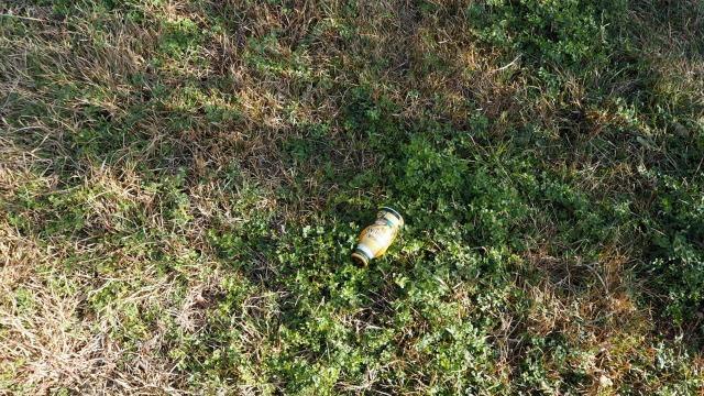 オリーブ畑に捨てられた空き缶