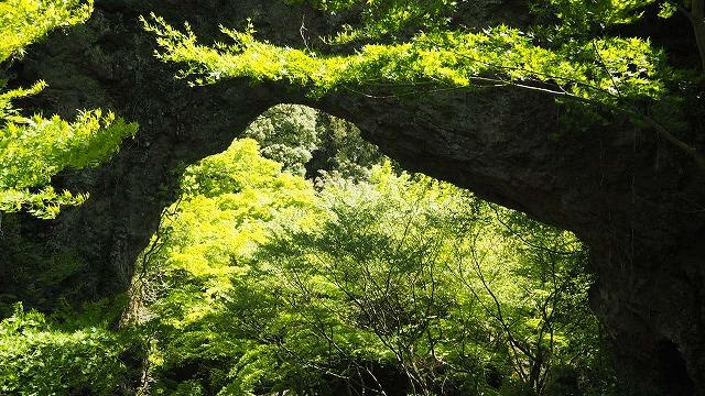 新緑の頃の石門洞