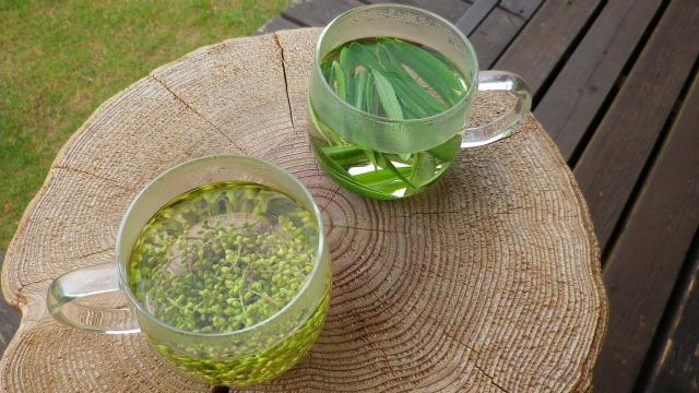 新芽茶と花芽茶