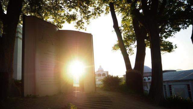早朝の小豆島オリーブ公園2020.5.12