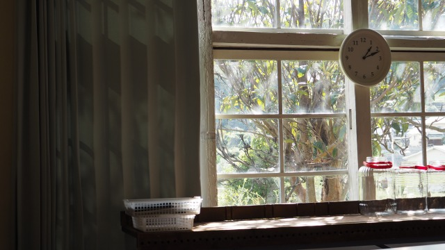 山田オリーブ園 搾油所の窓