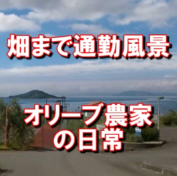 小豆島の通勤風景